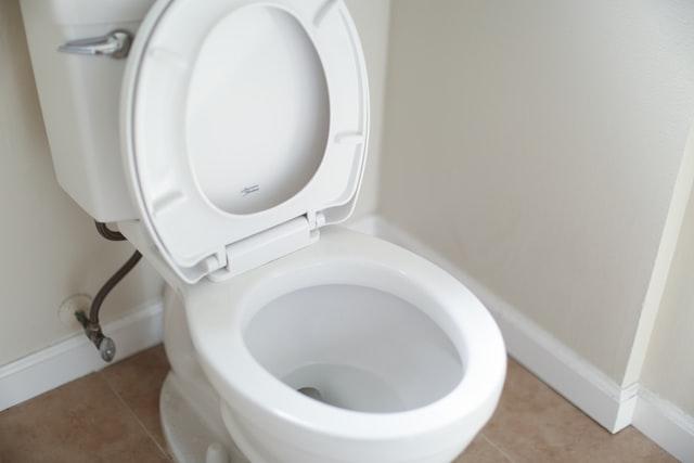 افضل 10 منظف مرحاض في 2021
